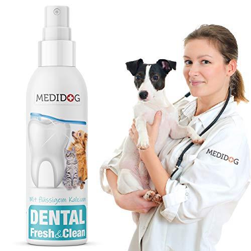 Medidog Dental Fresh&Clean Dentalspray für Hunde und Katzen zur Zahnpflege und Zahnreinigung I Zahnpflege Hunde für frischen Atem I...