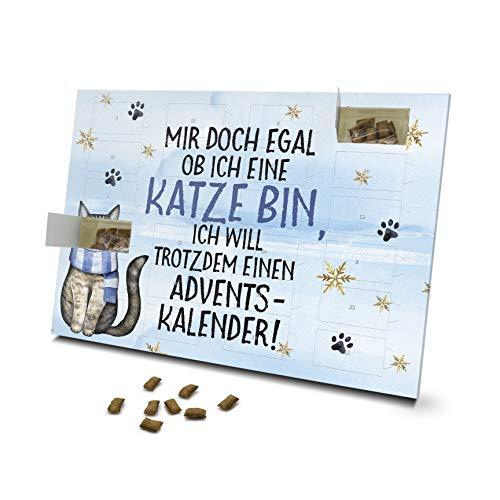printplanet - Katzen Adventskalender - Layout Mir doch egal...
