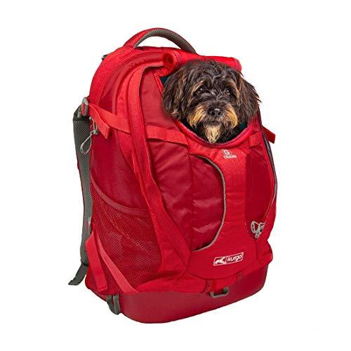 Kurgo K01909 kleiner Rucksack für kleine Hunde und Katzen, G-Train Haustier...