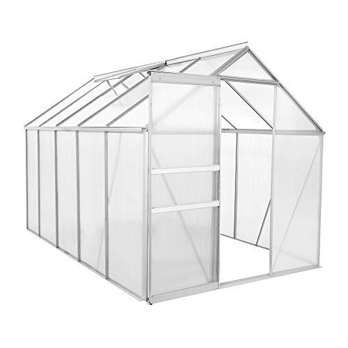Zelsius Aluminium Gewächshaus für den Garten | 310 x 190 cm | 6 mm Platten |...