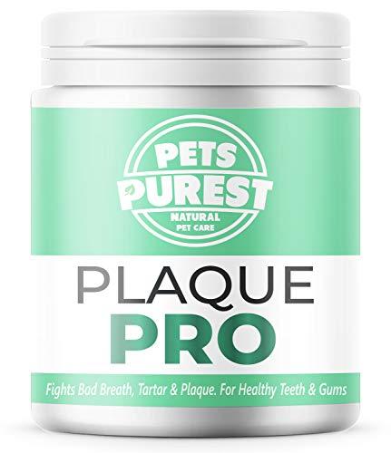 Pets Purest 100% Natürliche Zahnsteinpulver für Hunde & Katzen (180g) Plaque PRO Zahnpflege, Mundhygiene & frischer Atem, Zahnsteinentferner &...