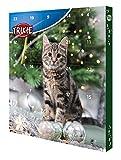 Trixie 9269 Pre-Christmas Advent Calendar for Cats, ...