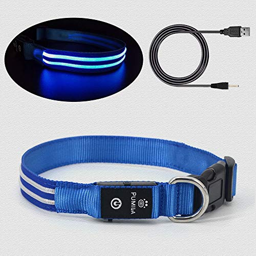 PetSol Ultra Bright USB Rechargeable LED Dog Safety Collar Increased Visibility /& Safety For Your Pets Cut To Fit Any Size Red Rechargeable Lithium Battery