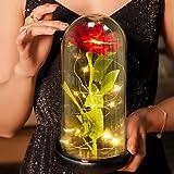 Comius Sharp Rose im Glas, Schöne und das Biest Rose Ewig Rose mit LED-Licht in...