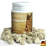 Gelenktabletten für Hunde - mit Grünlippmuschel, MSM und Teufelskralle - Hohe Akzeptanz beim Hund da keine Kapseln - 100 Tabletten für bis zu 6...