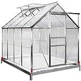 Invernadero de aluminio Deuba 4,75m² con cimentación 250x190cm ...