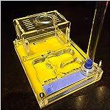 HTDHS мастерская муравьев 3D обучающее прозрачное насекомое ...