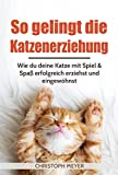 So gelingt die Katzenerziehung: Wie du deine Katze mit Spiel...