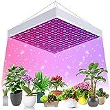Ulikey LED Pflanzenlampe, Pflanzenleuchte mit Rot Blau...