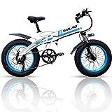 20 inch elektrische fiets met 1000 W 48 V 14Ah Samsung ...