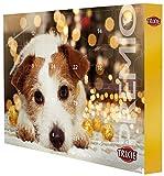 Trixie 9267 TRIXIE PREMIO Advent calendar for dogs, 24,5 ...