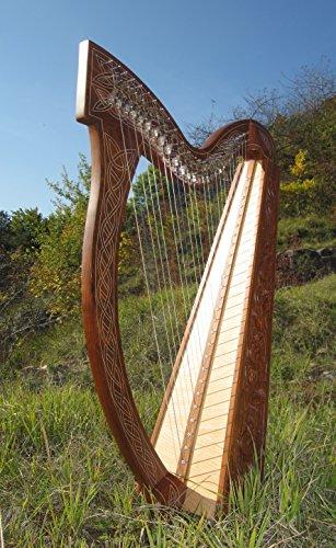 Buy A Harp >> Arp Harp Buy Honest Tests