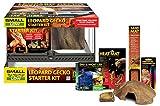 Exo Terra Leopard-Gecko Starter Kit