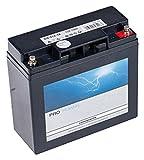 Forholdsdele 101, 842 startbatteri til plænetraktorer AGM, ...