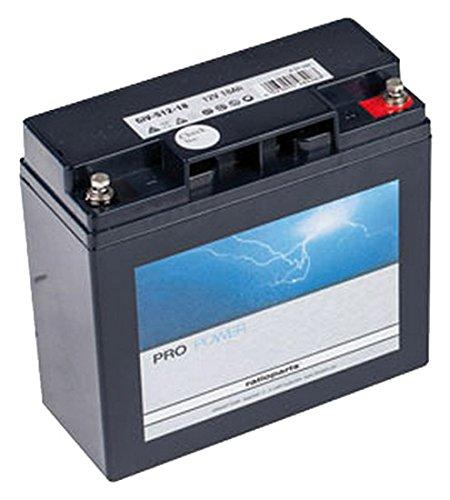 Ratioparts 101, 842 Starterbatterie für Rasentraktoren AGM, 12V, 18Ah, Schwarz