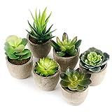 GoMaihe kunstig plante kunstig sukkulent plante 6 ...