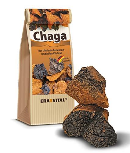 Chaga-Pilz, natur Brocken grob gemahlen, praktisch für ein Tee-Ei, Wildsammlung...