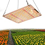 1000W LED Grow Lampe, 2x2ft wasserdichtes sonnenähnliches...