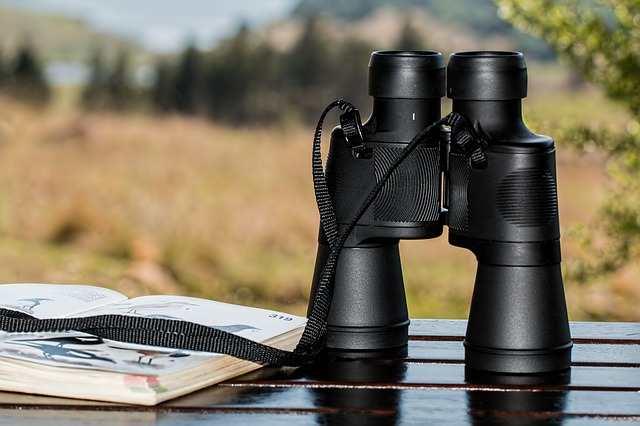 Kjøpeguide: Kjøp kikkert | Mye teknologi i kikkert