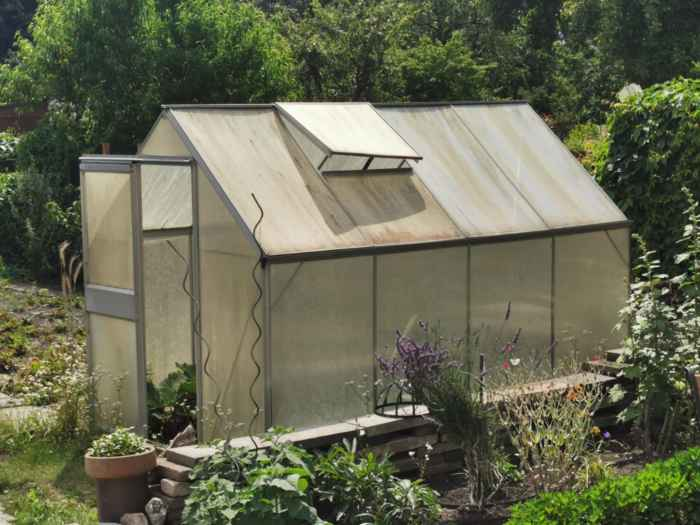 Greenhouse: Possibilities and tips for greenhouses in the garden